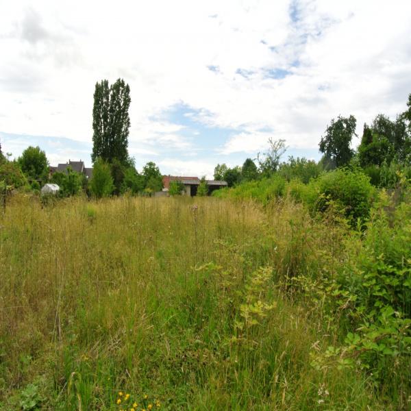 Offres de vente Terrain Hirtzbach 68118