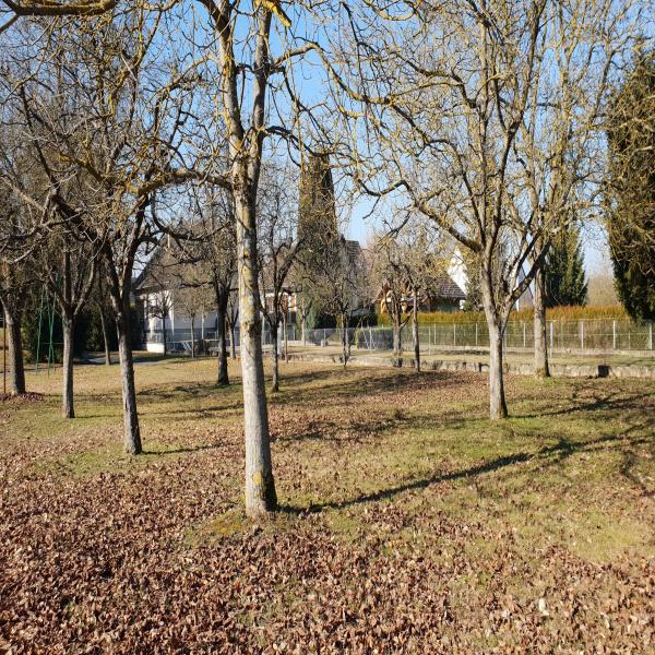 Offres de vente Terrain Spechbach-le-Haut 68720