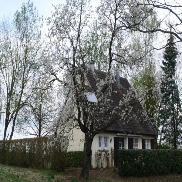 Offres de vente Maison Altenach 68210