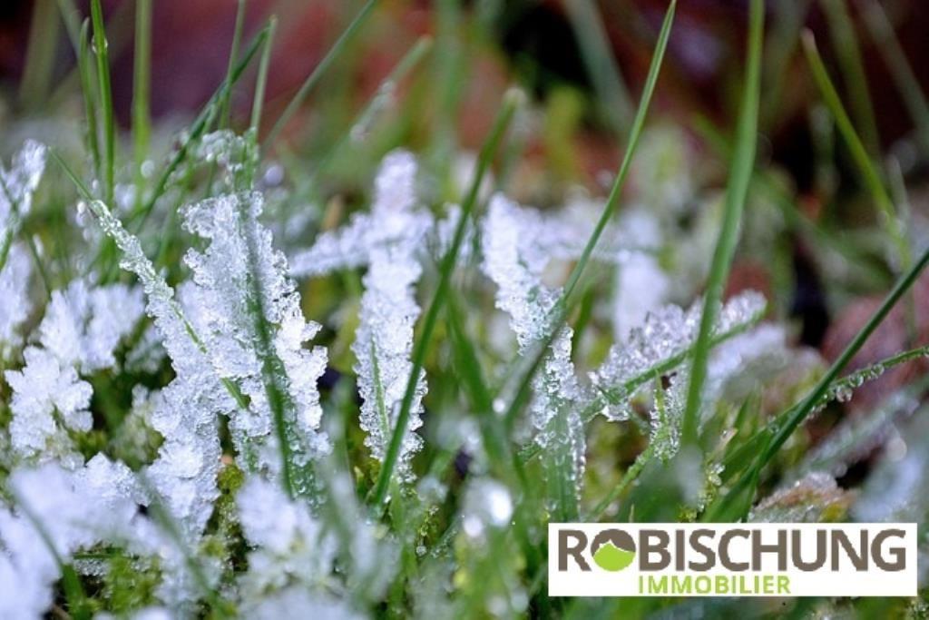 grass-22172_640
